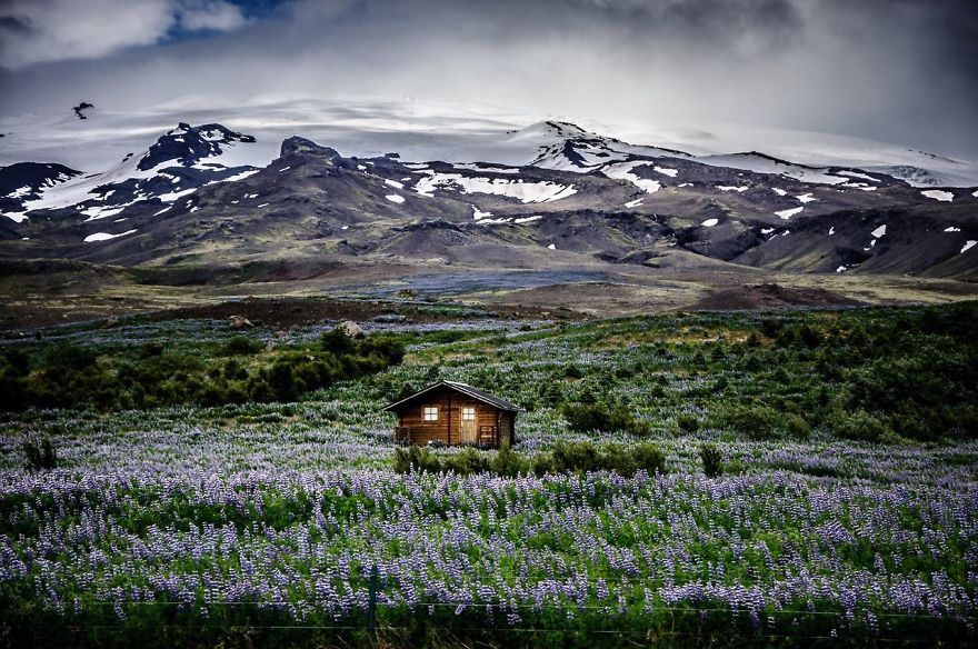 Icelandic Mountain Meadow Retreat