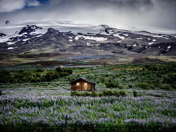 20 самых уединенных домиков для тех, кто любит тишину и спокойствие