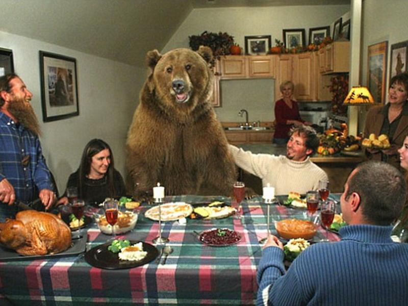 История о парне, который нашел и взял на воспитание двух медвежат