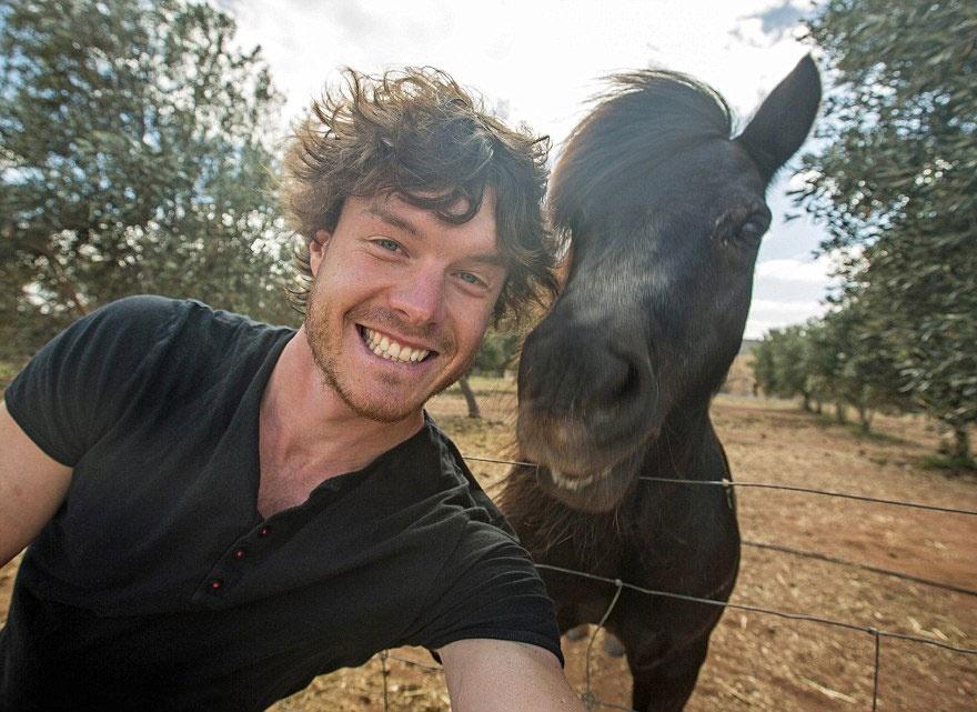 5511010-880-1450945704-funny-animal-selfies-allan-dixon-19