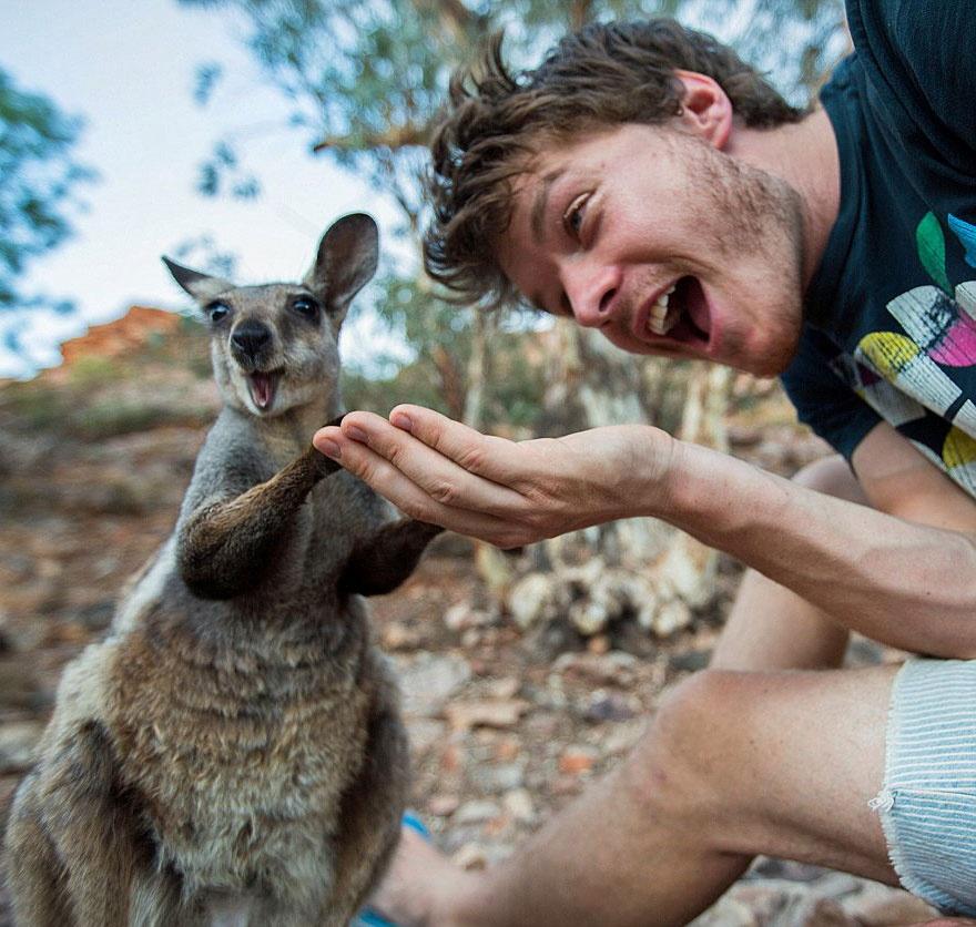5511060-880-1450945704-funny-animal-selfies-allan-dixon-21