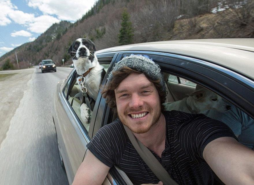 5511310-880-1450945704-funny-animal-selfies-allan-dixon-23