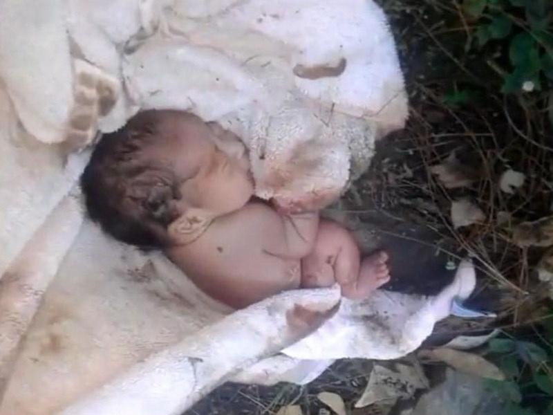 Мужчина нашел в парке брошенную новорожденную девочку. То, что он потом сделал, просто невероятно!