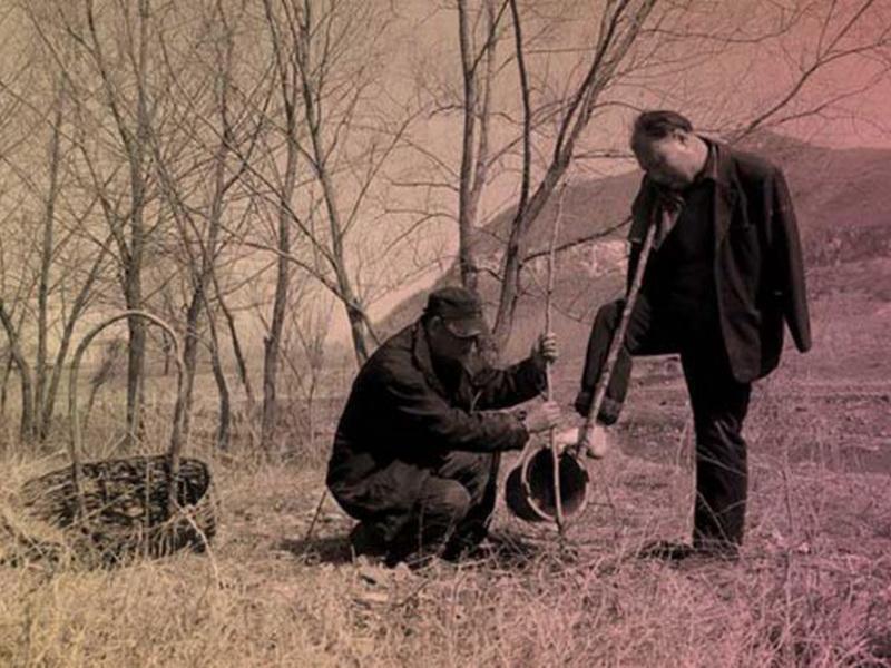 Один из них не видит, а второй без рук, но вместе за 10 лет они посадили около 10 000 деревьев