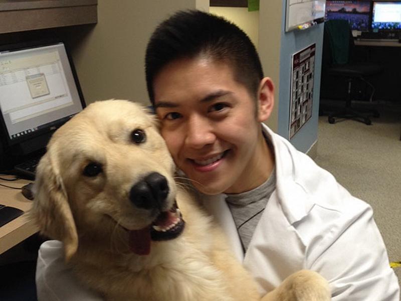 Работать ветеринаром – это круто!