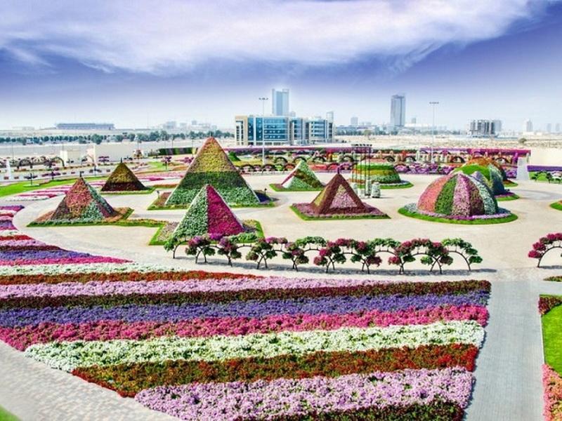 «Сад чудес» в Дубае способен поразить даже самых придирчивых садоводов