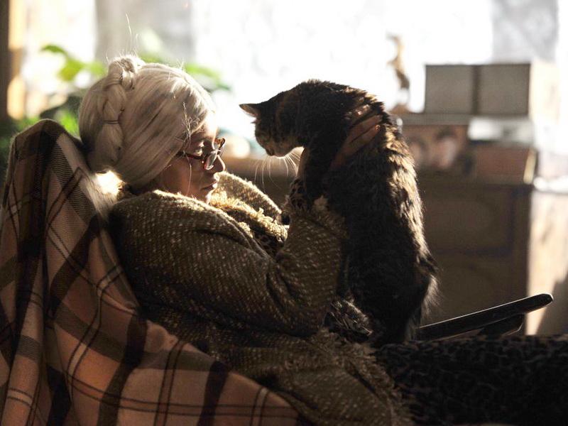Старая дева загадала фее 3 самых заветных желания, но забыла об одной важной детали…