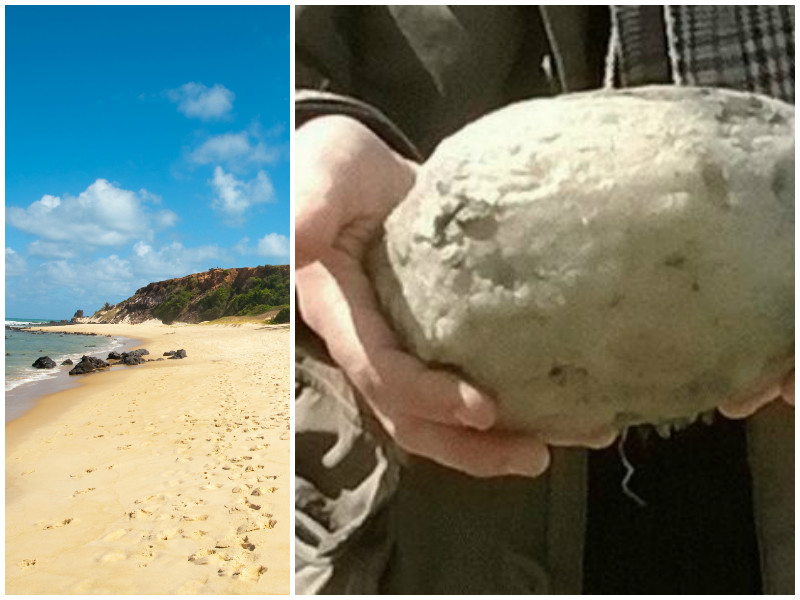 Они нашли вонючий предмет на пляже и продали его за 70 000$
