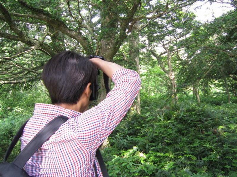 Если вам кажется, что он просто фотографирует лес, то ваши глаза вас обманывают!
