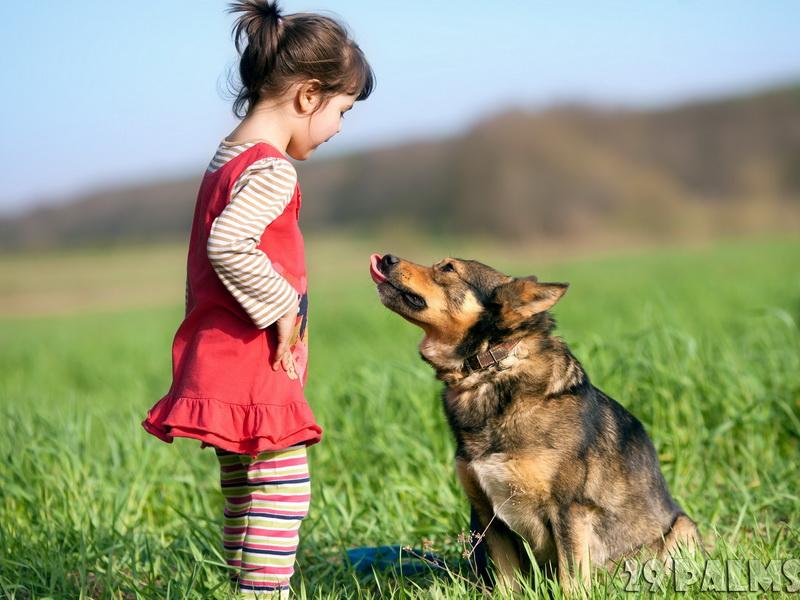 Мама запретила дочке брать с собой собаку. И на это была серьезная причина!