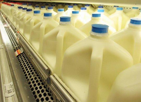 Пара попросила женщину купить им молоко. Они не ожидали ТАКОГО ответа!