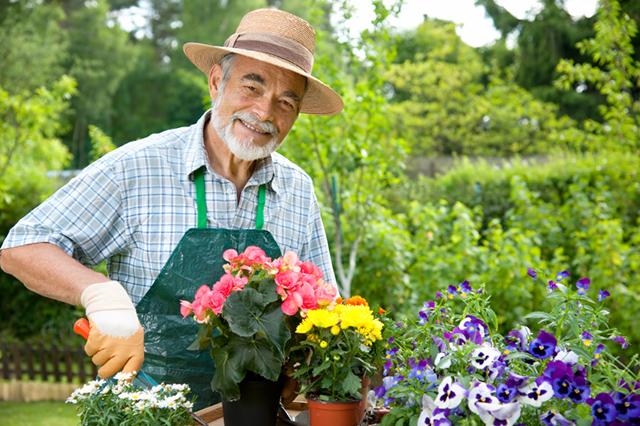 История про садовника, который все разложил по полочкам