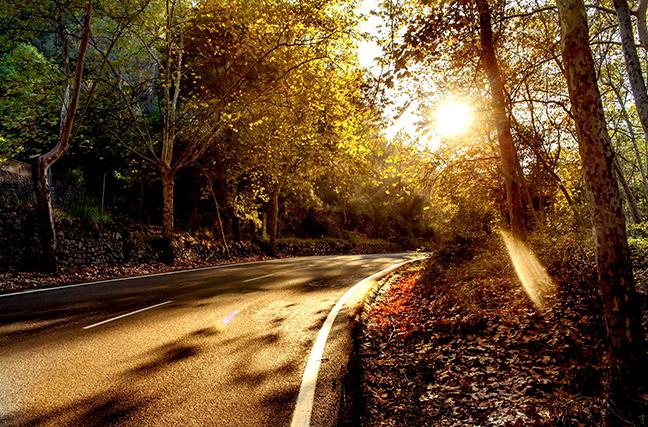 Рассказ о приключениях находчивых автомобилистов с люком на лесной дороге