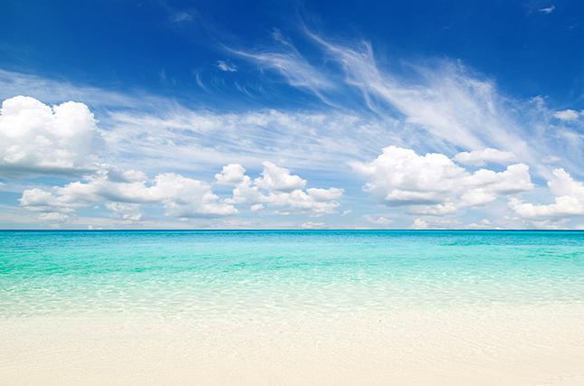 Потрясающий анекдот о подготовке пляжа к приезду богатого человека