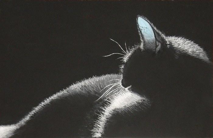 Когда они застыли в ожидании черной кошки, то даже не подозревали, что их ожидает