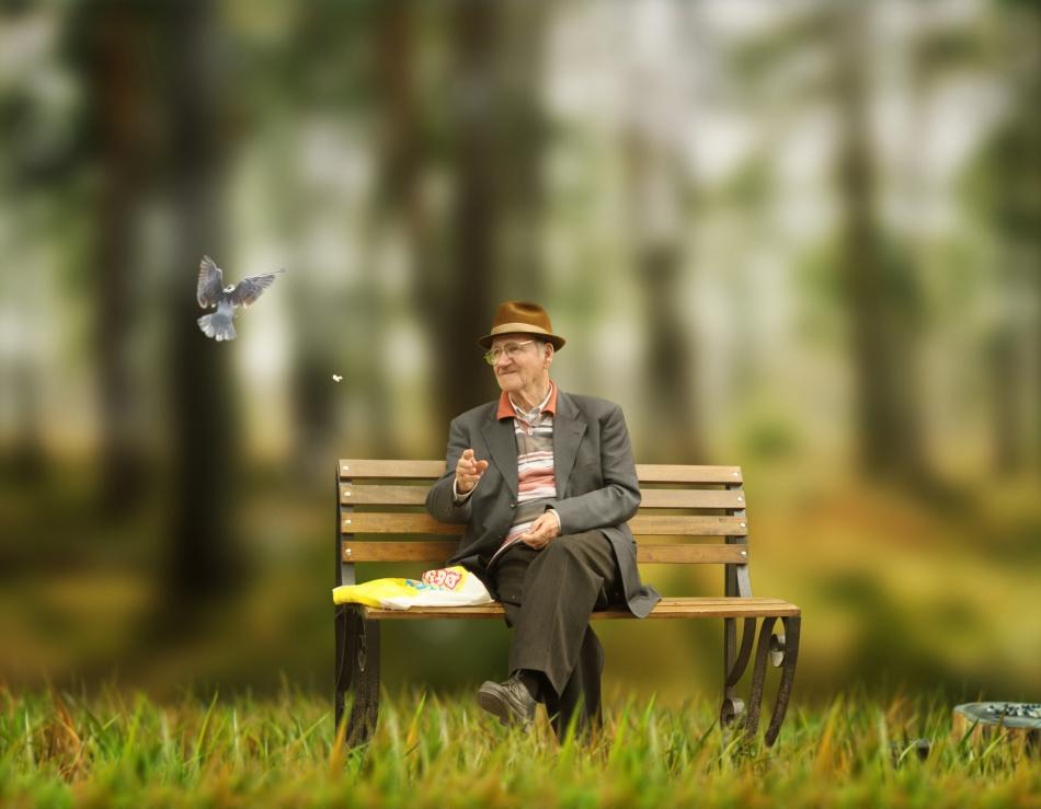 Старик плакал на скамейке в парке. Но причина, почему так произошло — просто безумие!