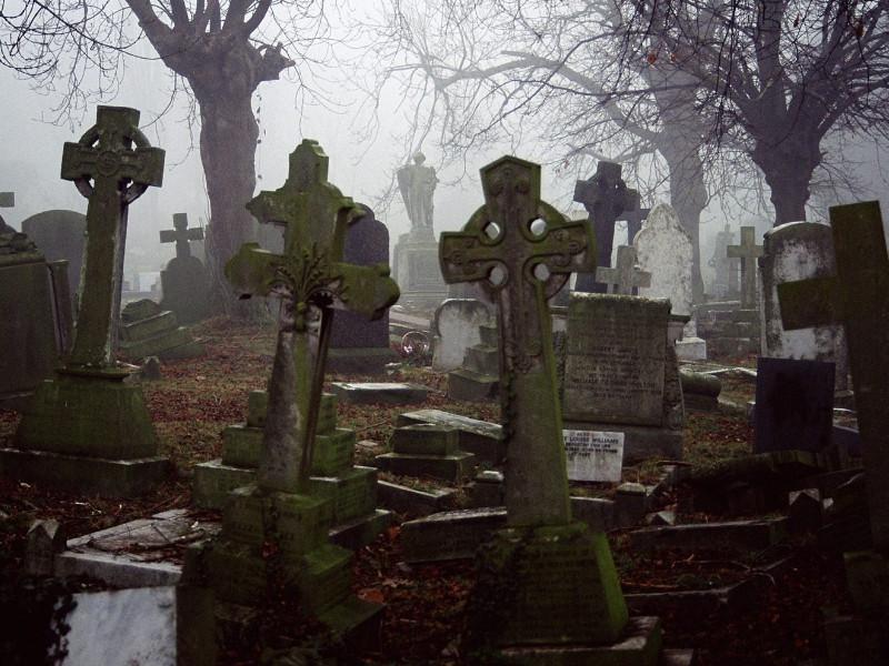 Женщина боялась идти по кладбищу, мужик решил её провести. То, что произошло дальше — просто невероятно!