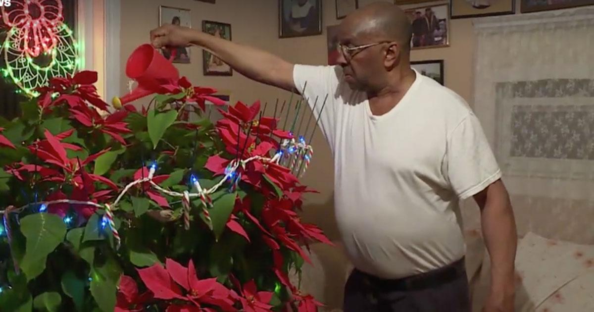 Скорбящий вдовец поливает цветок своей покойной жены каждый день на протяжении 19 лет после ее смерти!