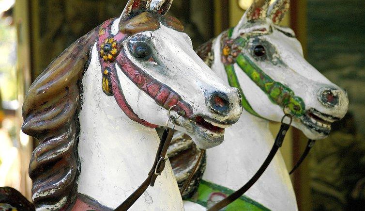 Блондинка впервые пытается покататься на лошади, но это не то, что вы ожидаете!