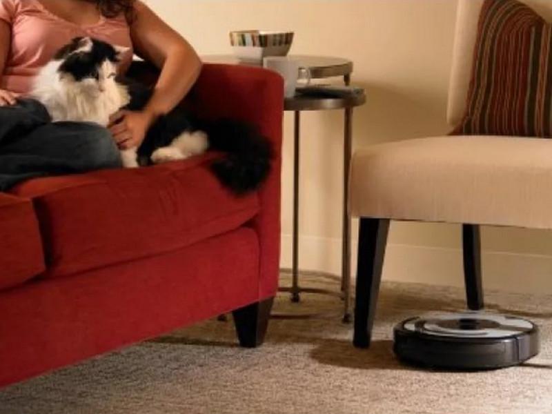 В семье с котом купили робот-пылесос. Только послушай, что произошло дальше!
