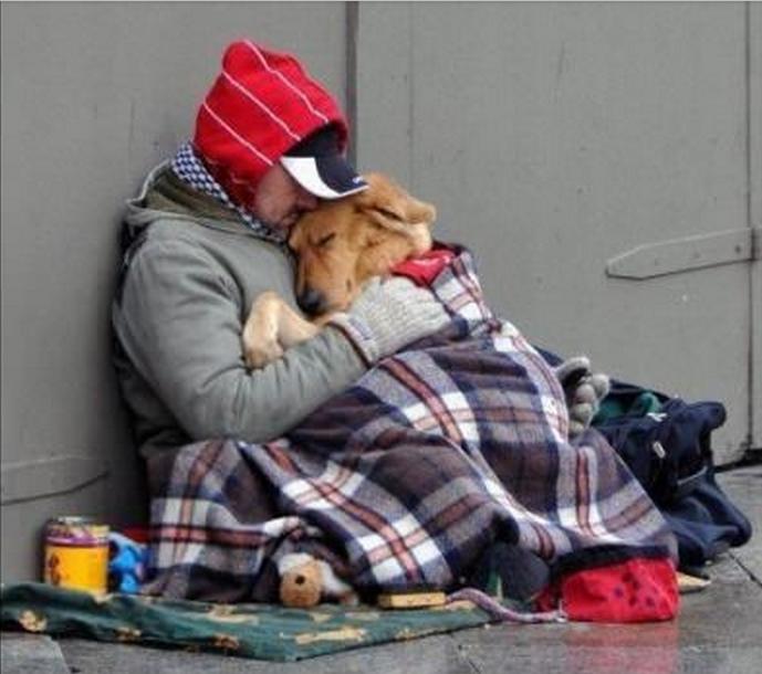 Мужчина находит бездомного парня и его собаку, замерзающих на улице. Что происходит дальше — так печально!