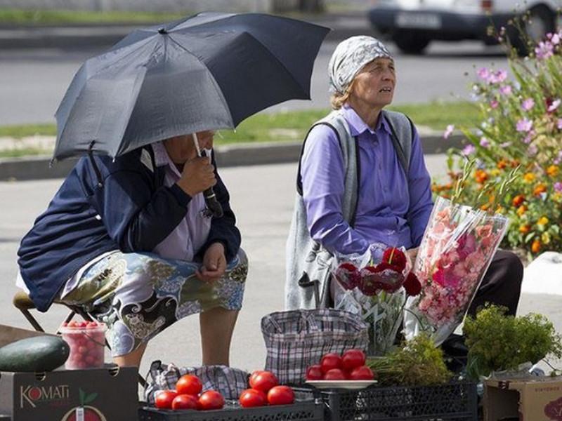 Бабуля на обочине торгует помидорами из Чернобыля. Покупатель решил спросить, кто же их берет! Ответ бабули — НЕЧТО!