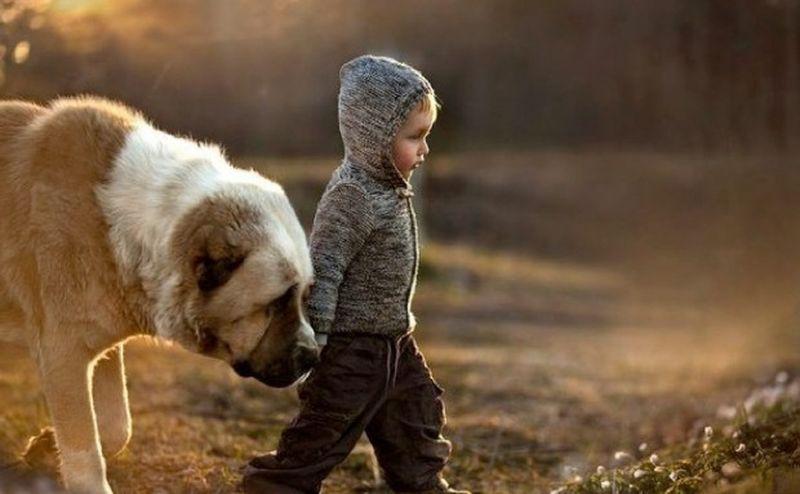 Он должен был усыпить любимую собаку этой семьи. Но тогда мальчик сказал это!