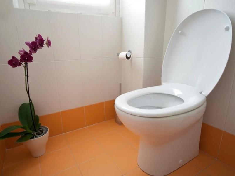 Эту весёлую ситуацию в туалете стоит прочитать!