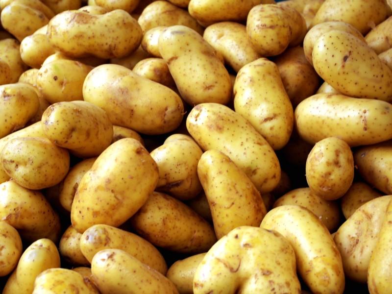 То, как завуалированно коллега позвал друзей копать картошку — забавно!