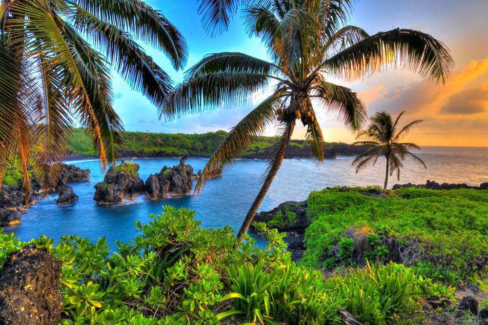Пожилая пара оказывается на необитаемом острове. Но реакция мужа просто слишком хороша!