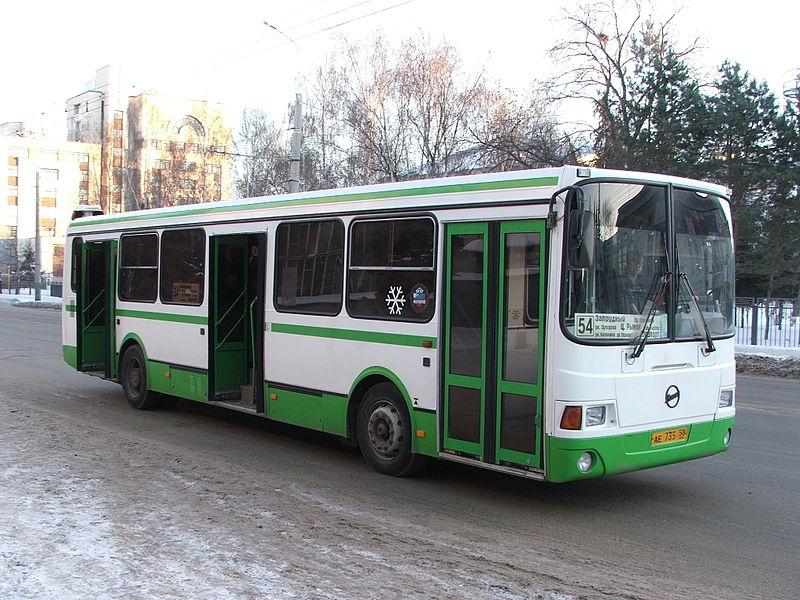 Когда в автобусе не осталось свободных мест, старушка…