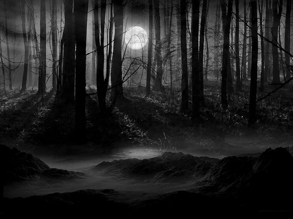 Животные обсуждают, кто должен отправиться в темный лес. Идея хитрого лиса — чистое золото!
