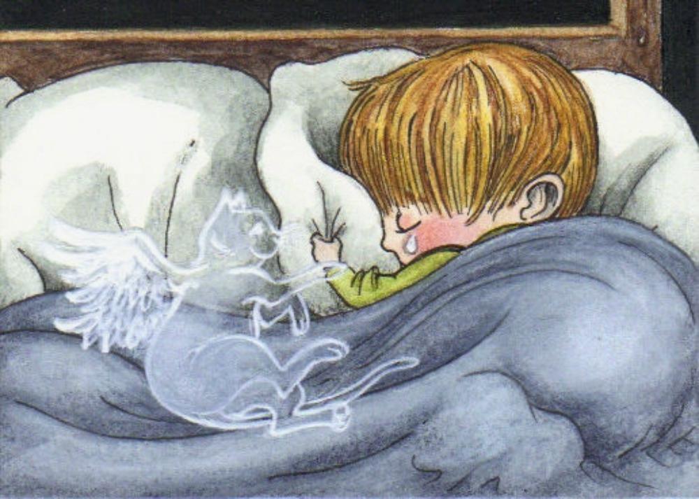 У этого мальчика погибла кошка. Но то чему научил его отец – бесценно!