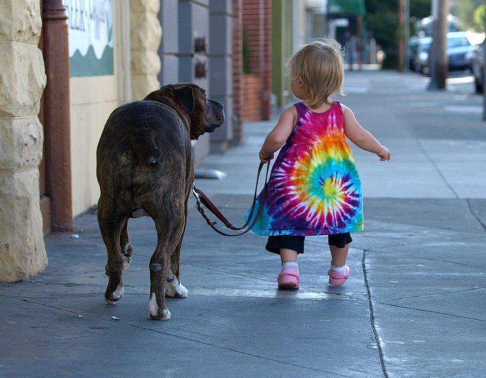 Этой собаке «нездоровилось», но девочка все равно повела ее на прогулку. Что она сказала после – уморительно!