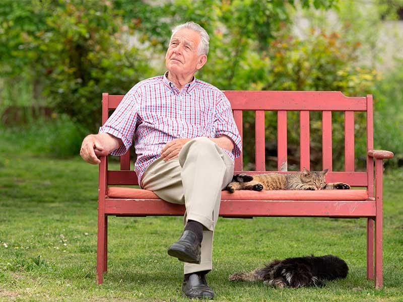 Старик плакал на скамейке в парке. Причина, почему он это делал — это просто безумие!