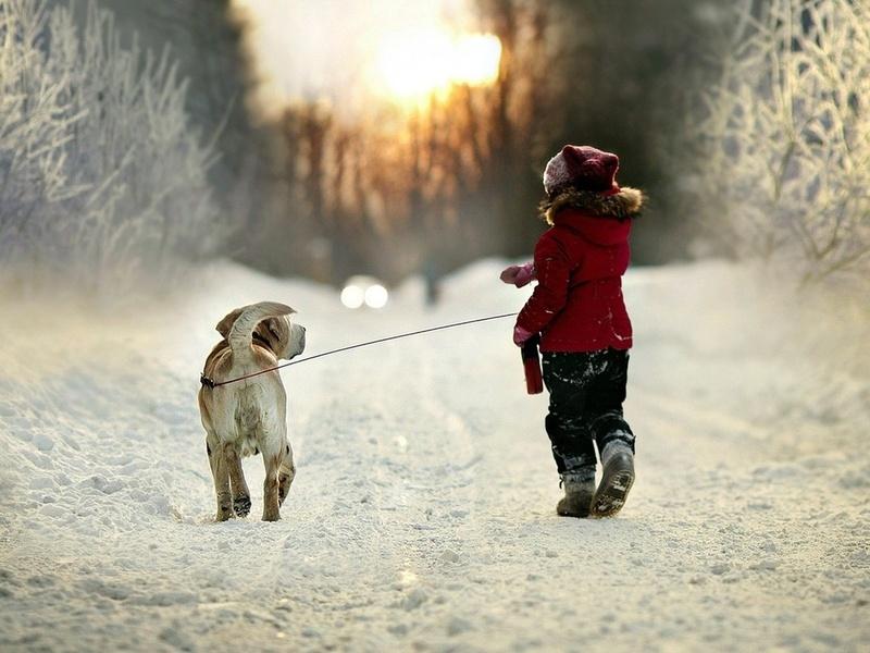 Маленькая девочка хотела вывести собаку, но получила такой непонятный ответ…