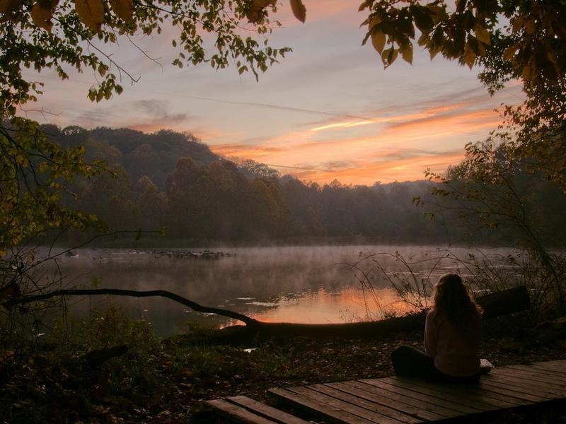 Она увидела пожилую женщину, сидящую у озера с металлической клеткой. Но, была ошеломлена, когда увидела, что она делает!