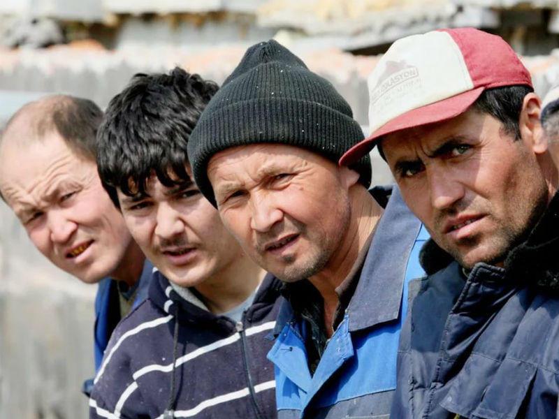 Узбеки явно попались не самые умные!