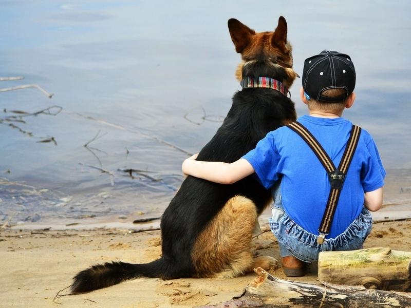 Он должен был усыпить любимую собаку этой семьи. Но, только послушай, что сказал шестилетний сынишка!