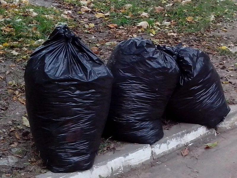 Толик замечательно сходил, чтобы выбросить мусор! :)