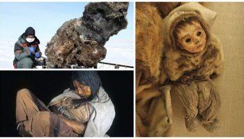 Просто невероятные вещи, которые были найдены во льдах (18+)