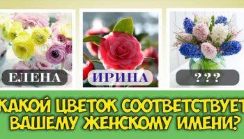 Мы знаем, какой цветок соответствует вашему имени и является вашим оберег
