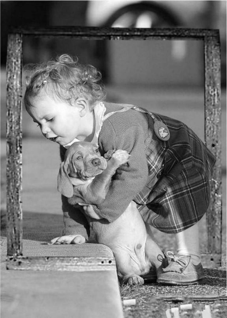 Самые-самые добрые в мире фото: их можно смотреть вечно, улыбаться и плакать. Новости Днепра