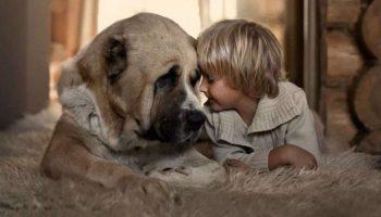 Фотограф создает лучшие фото своих детей с животными в деревне