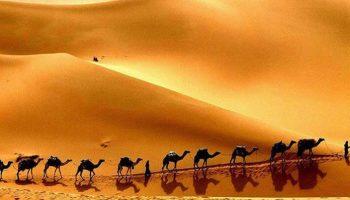 Факты мировой истории: Почему в колодцах среди пустыни всегда была и есть вода?