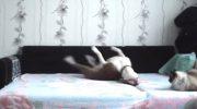 Песику не разрешают залезать на кровать. Но что же он делает, оставшись дома один?