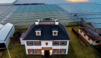Высокотехнологичные Нидерланды: Страна, где понимают важность сельского хозяйства