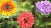 Проверенный психологический тест. Что может рассказать о людях выбранный ими цветок