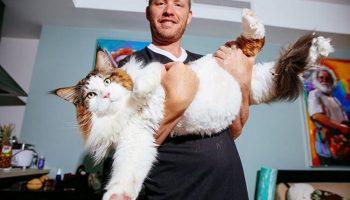 Такого кота вы точно еще никогда в жизни не видели