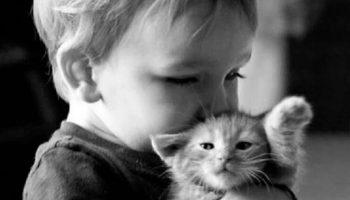 Подборка фактов, которые доказывают, что все дети должны иметь животных